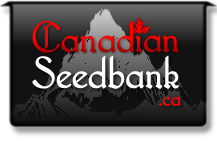 CanadianSeedBank.ca